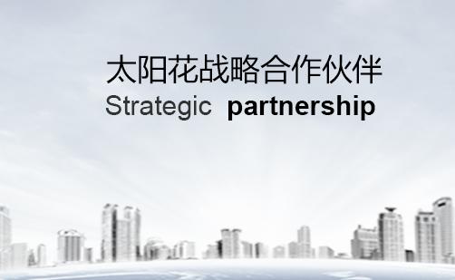 工程业绩及主要战略合同