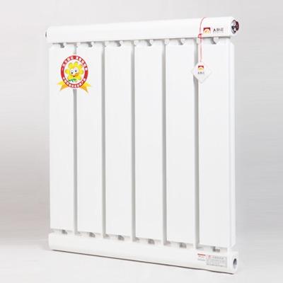 铝制散热器-双喜